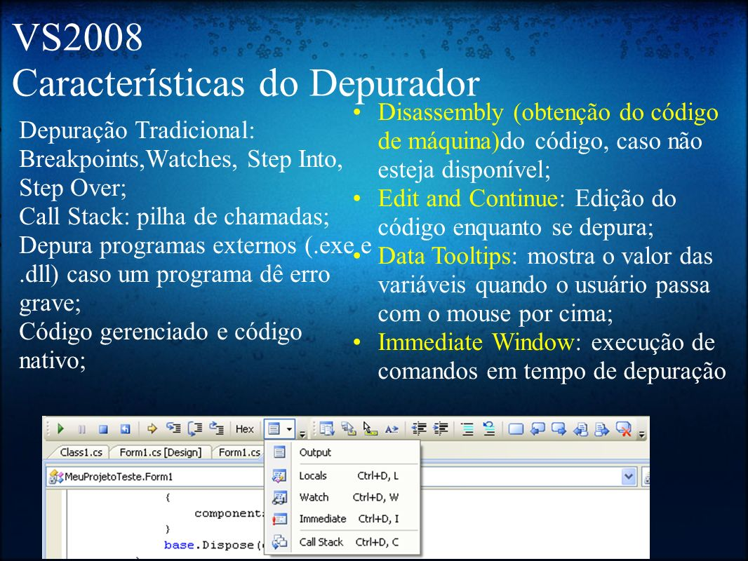 VS2008 Características do Depurador