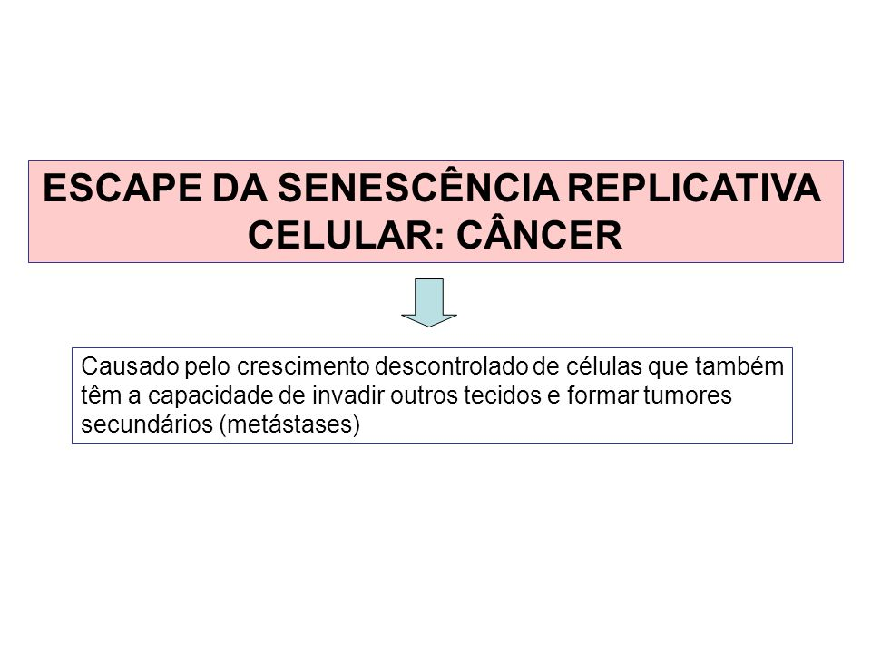 ESCAPE DA SENESCÊNCIA REPLICATIVA