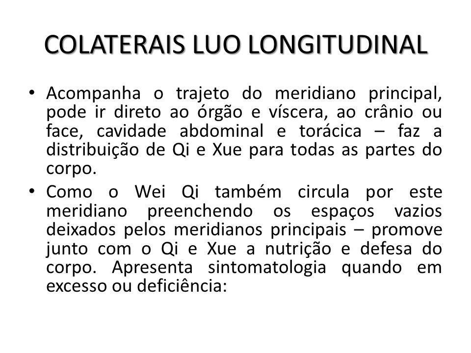 COLATERAIS LUO LONGITUDINAL