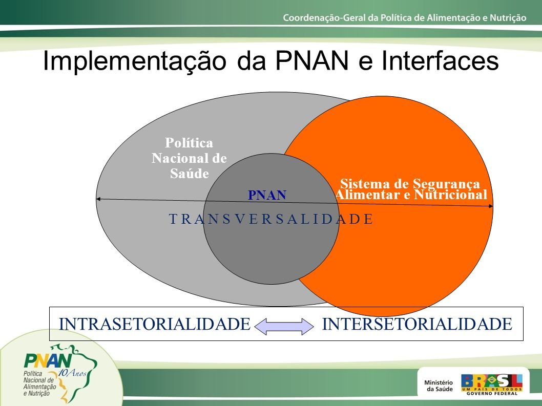 Implementação da PNAN e Interfaces