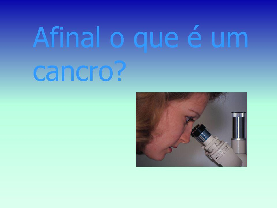 Afinal o que é um cancro Cancer is a cellular disease