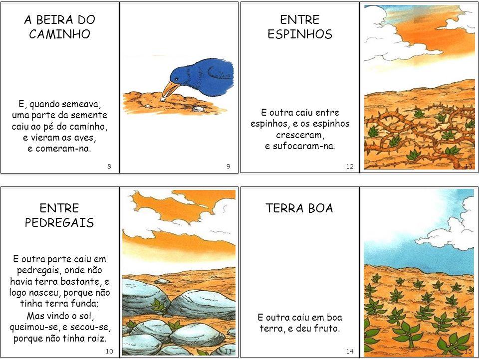 Resultado de imagem para parábola do semeador