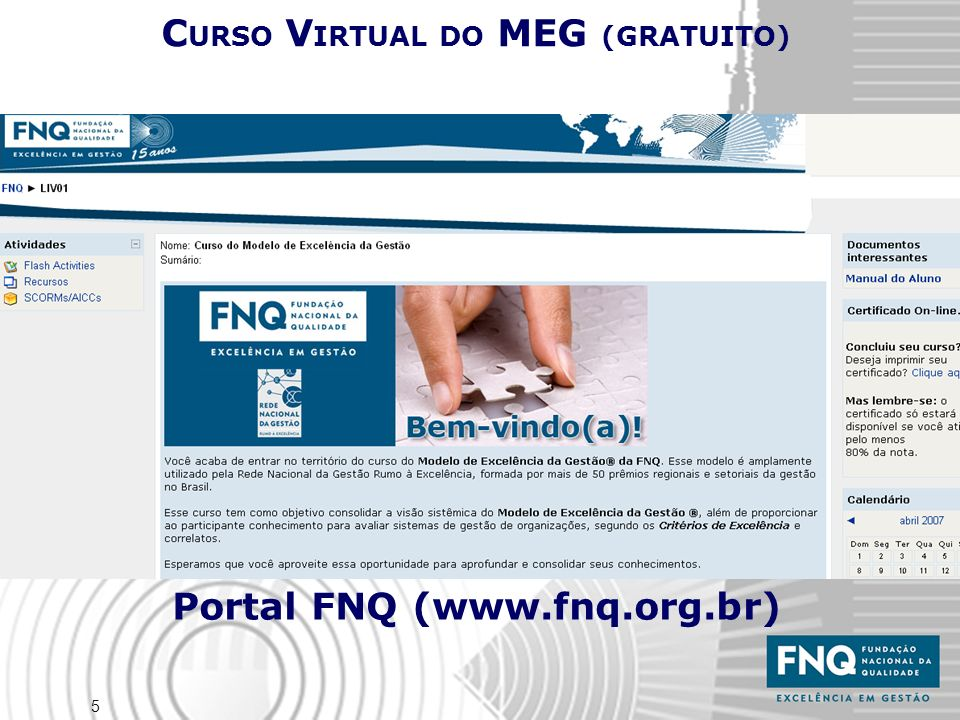 CURSO VIRTUAL DO MEG (GRATUITO) Portal FNQ (