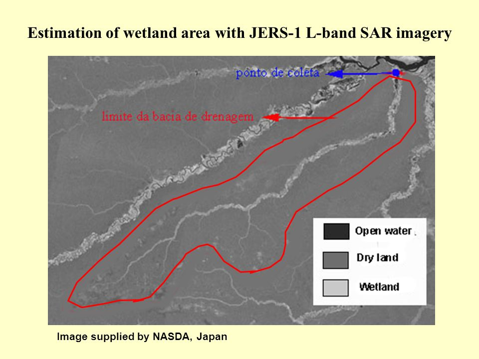 Estimation of wetland area with JERS-1 L-band SAR imagery