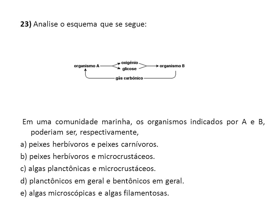 23) Analise o esquema que se segue: