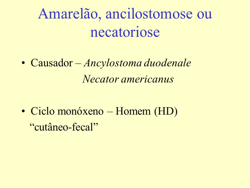 Amarelão, ancilostomose ou necatoriose