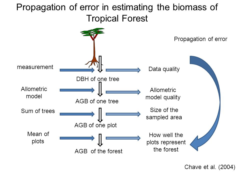 Propagation of error in estimating the biomass of Tropical Forest