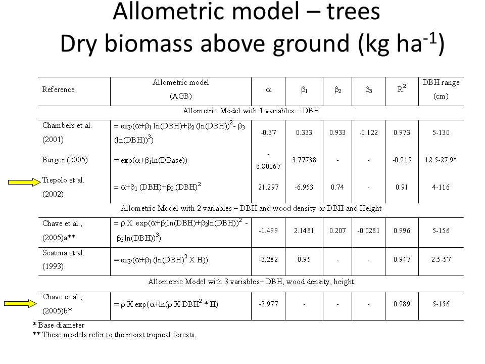 Allometric model – trees Dry biomass above ground (kg ha-1)