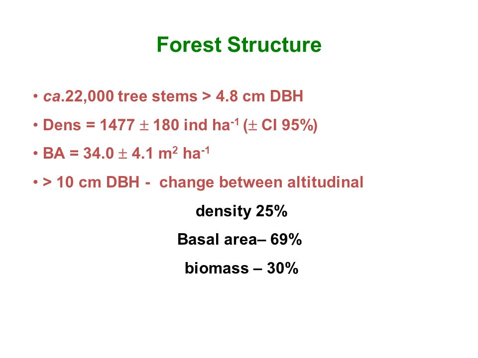 Forest Structure ca.22,000 tree stems > 4.8 cm DBH