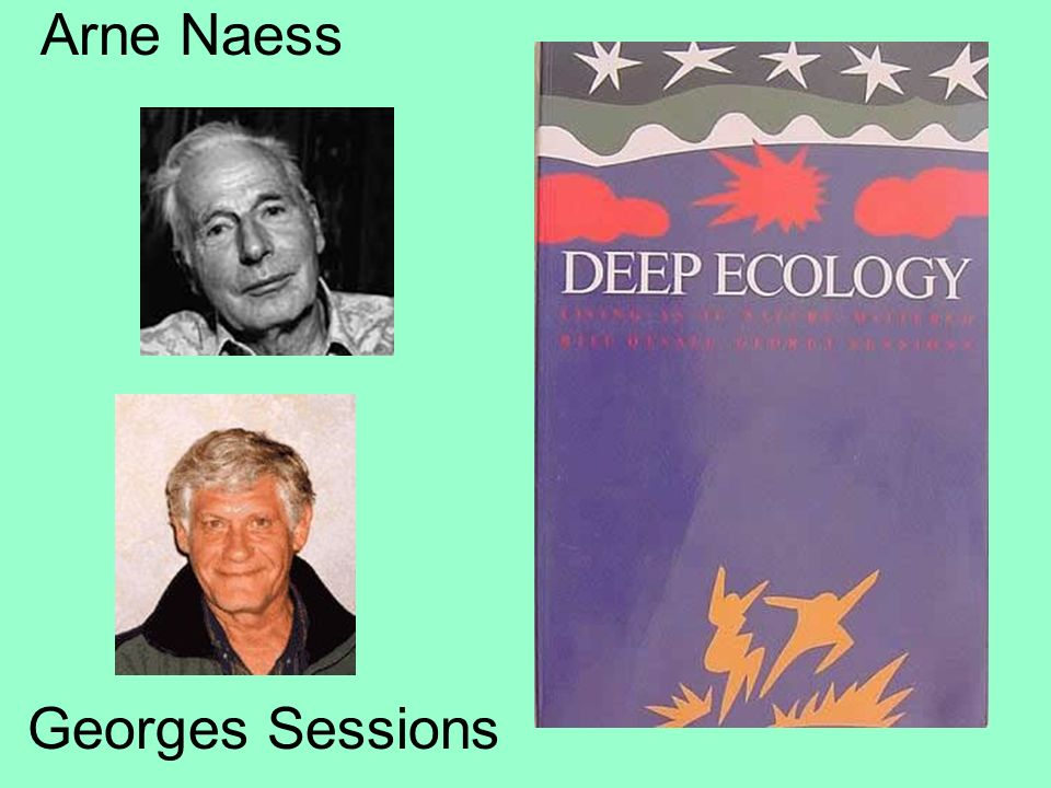 Arne Naess Georges Sessions
