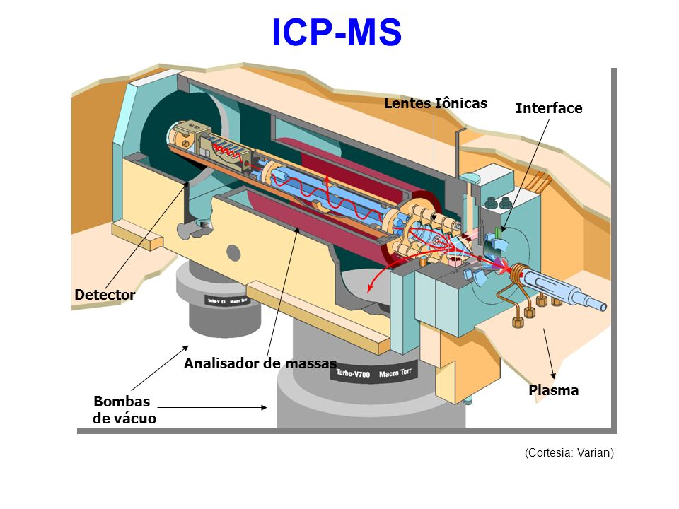 ICP-MS Lentes Iônicas Interface Detector Analisador de massas Plasma