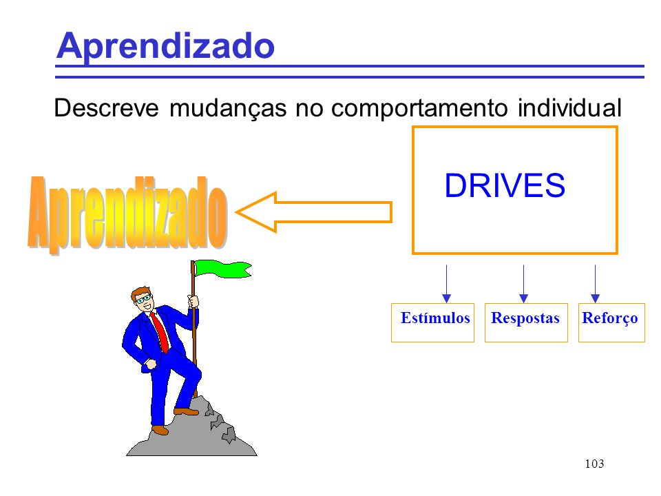 Descreve mudanças no comportamento individual DRIVES