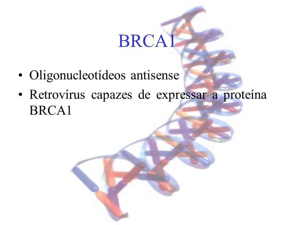 BRCA1 Oligonucleotídeos antisense