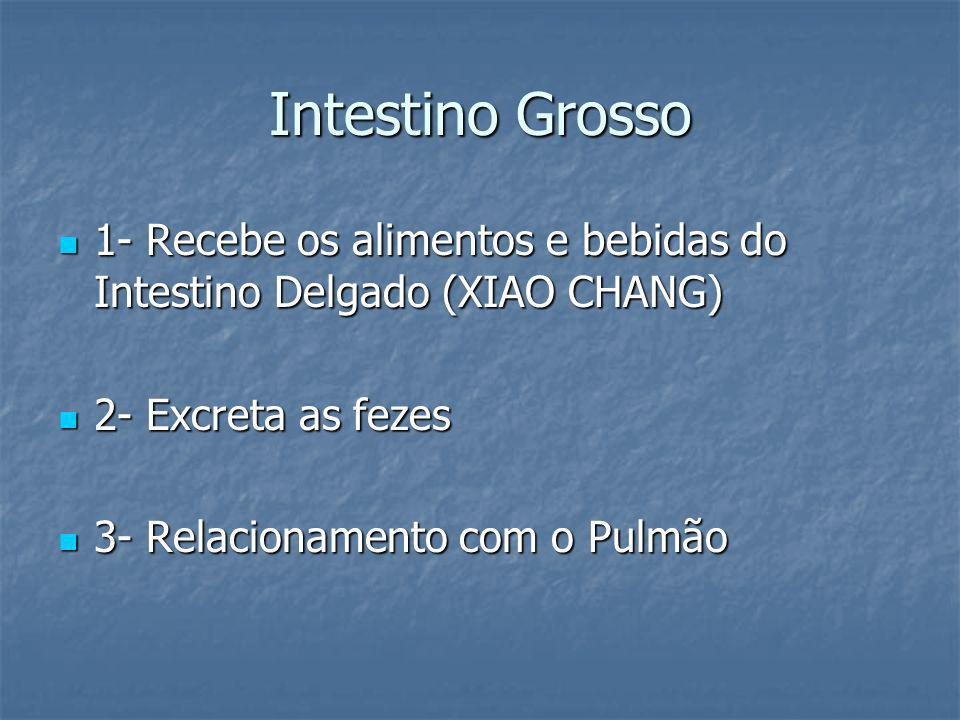 Intestino Grosso 1- Recebe os alimentos e bebidas do Intestino Delgado (XIAO CHANG) 2- Excreta as fezes.