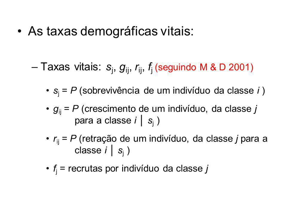 As taxas demográficas vitais: