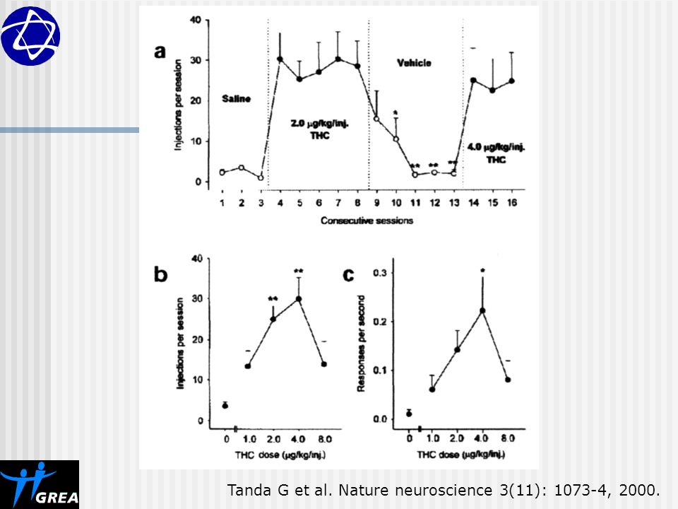 Tanda G et al. Nature neuroscience 3(11): , 2000.