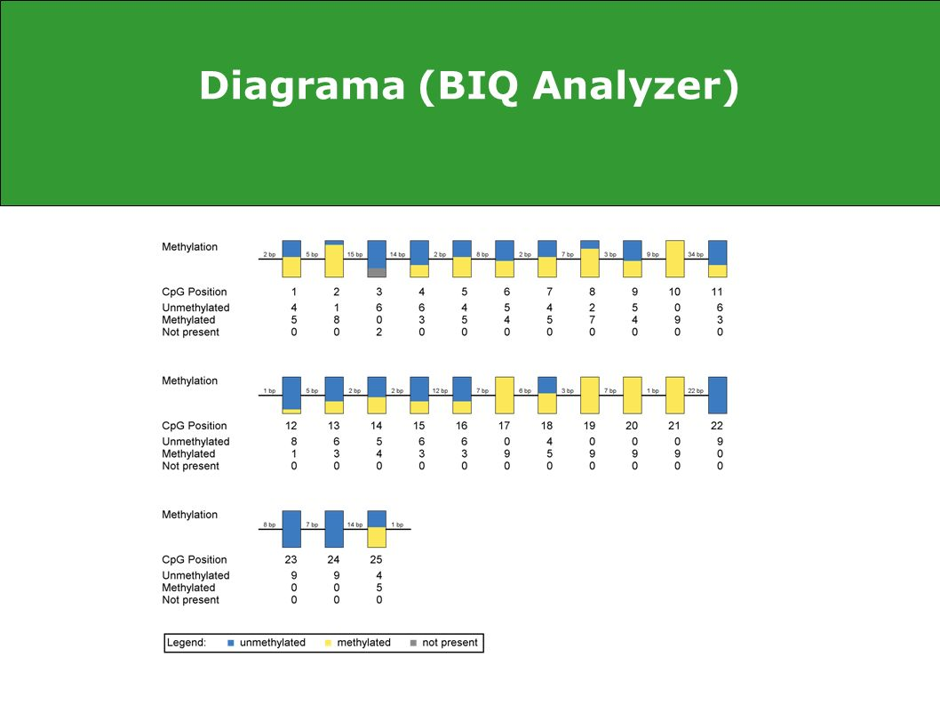 Diagrama (BIQ Analyzer)