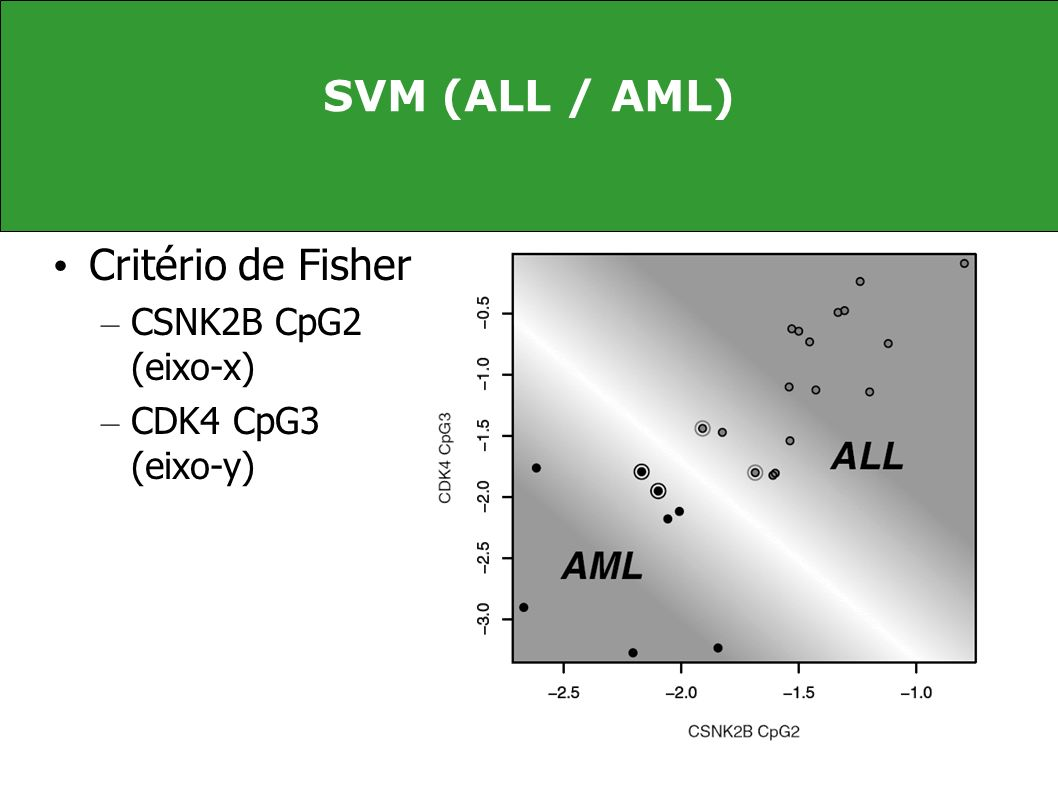 SVM (ALL / AML) Critério de Fisher CSNK2B CpG2 (eixo-x)