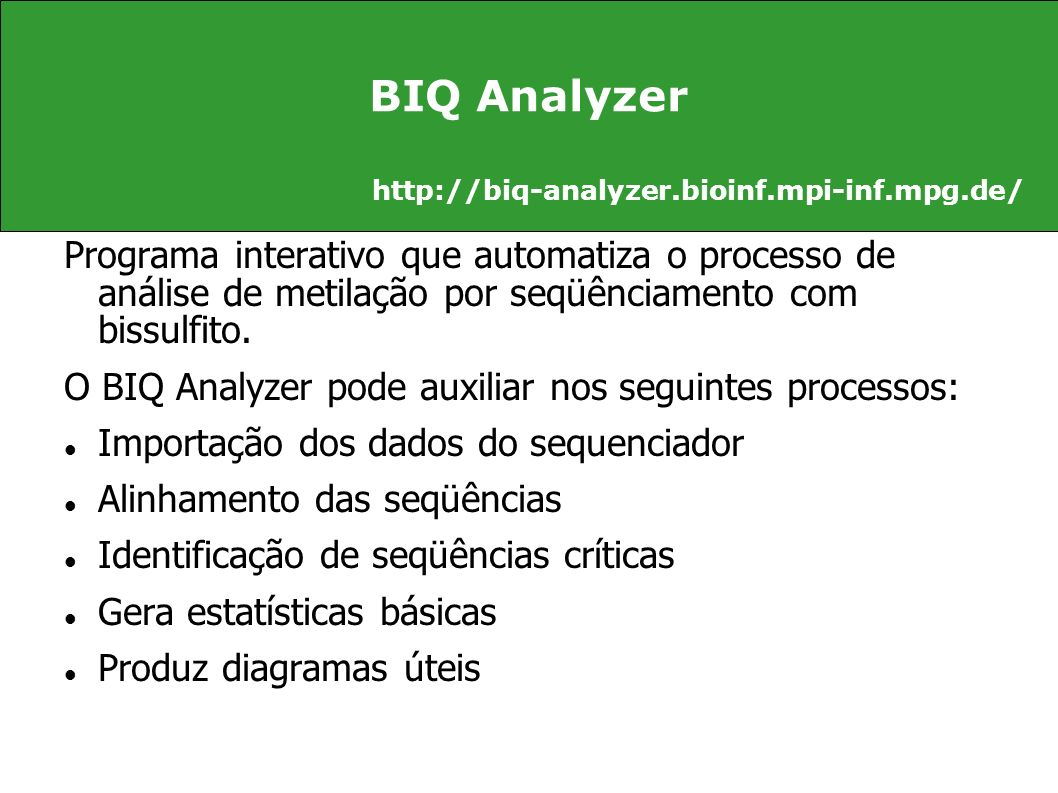 BIQ Analyzer