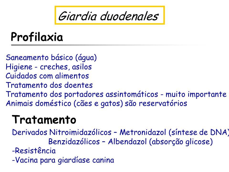 profilaxia giardiozei)