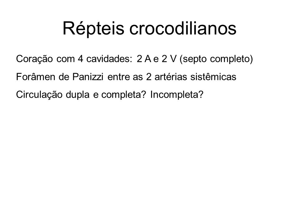 Répteis crocodilianos