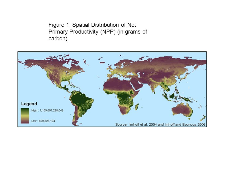 Figure 1. Spatial Distribution of Net Primary Productivity (NPP) (in grams of carbon)