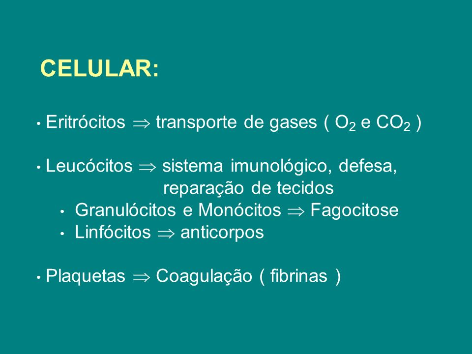 Eritrócitos  transporte de gases ( O2 e CO2 )