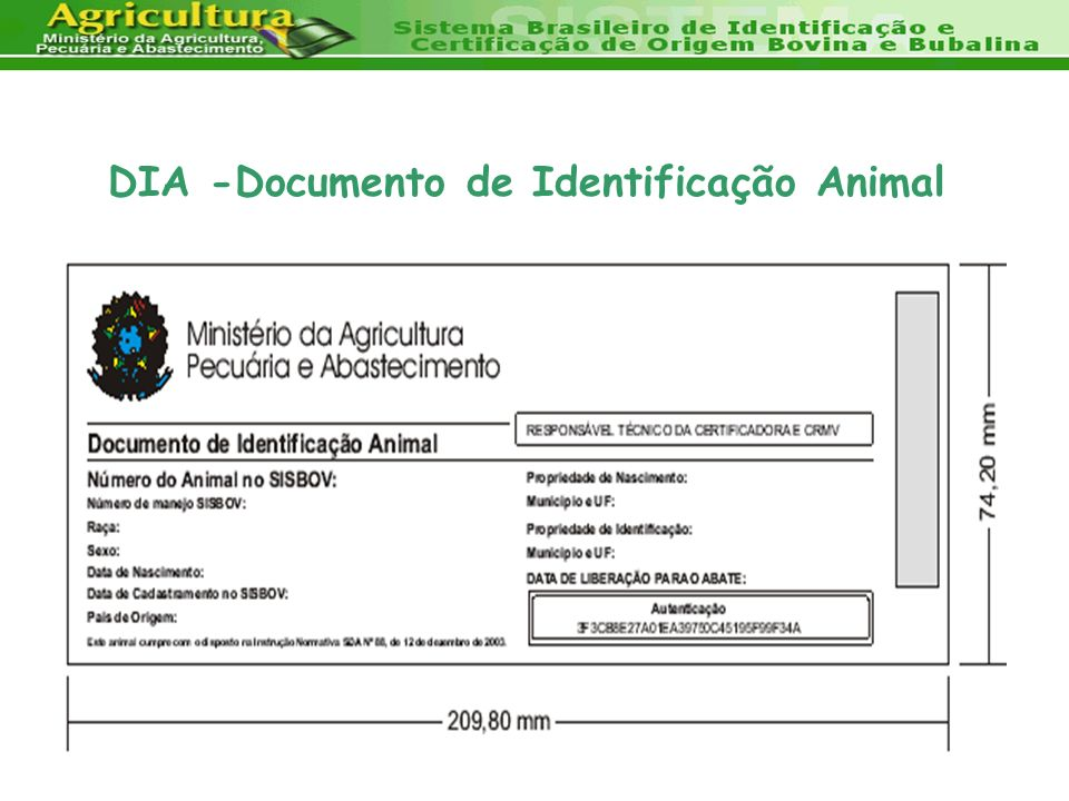 DIA -Documento de Identificação Animal