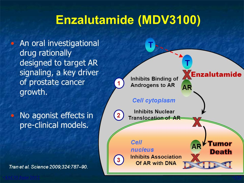 Enzalutamide (MDV3100) An oral investigational drug rationally designed to target AR signaling, a key driver of prostate cancer growth.