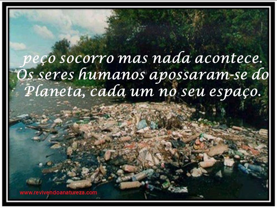 Irene Alvina Pare Não Destrua A Natureza Não Deixe De Ligar O