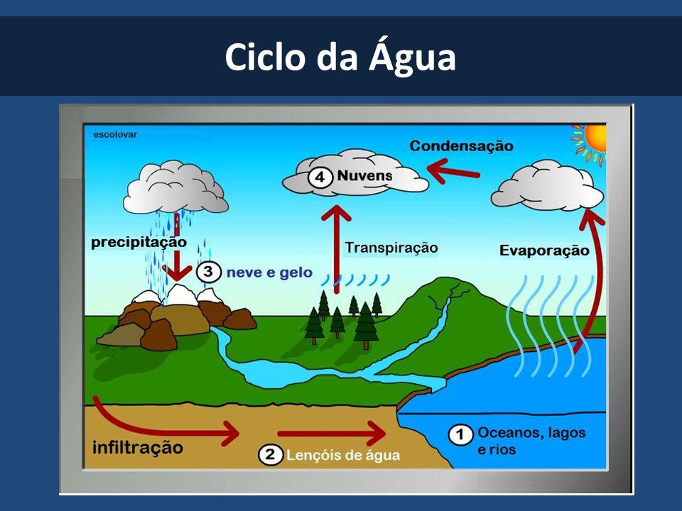 Resultado de imagem para Ciclos biogeoquímicos