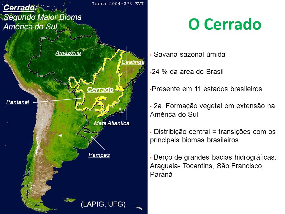 O Cerrado South American and Cerrado: the two largest