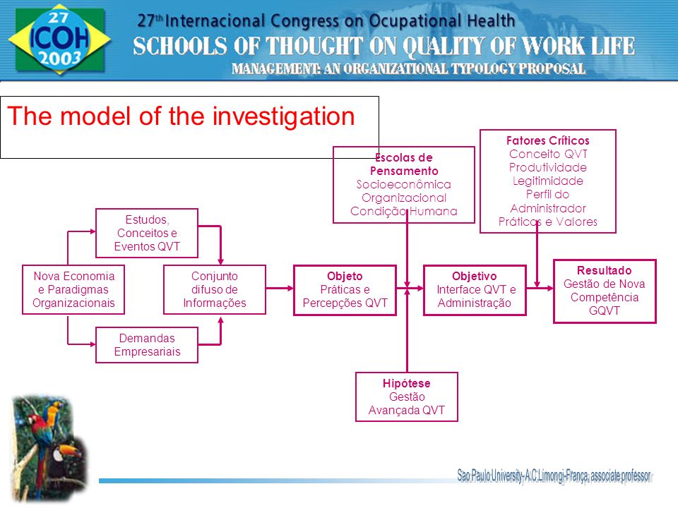 The model of the investigation