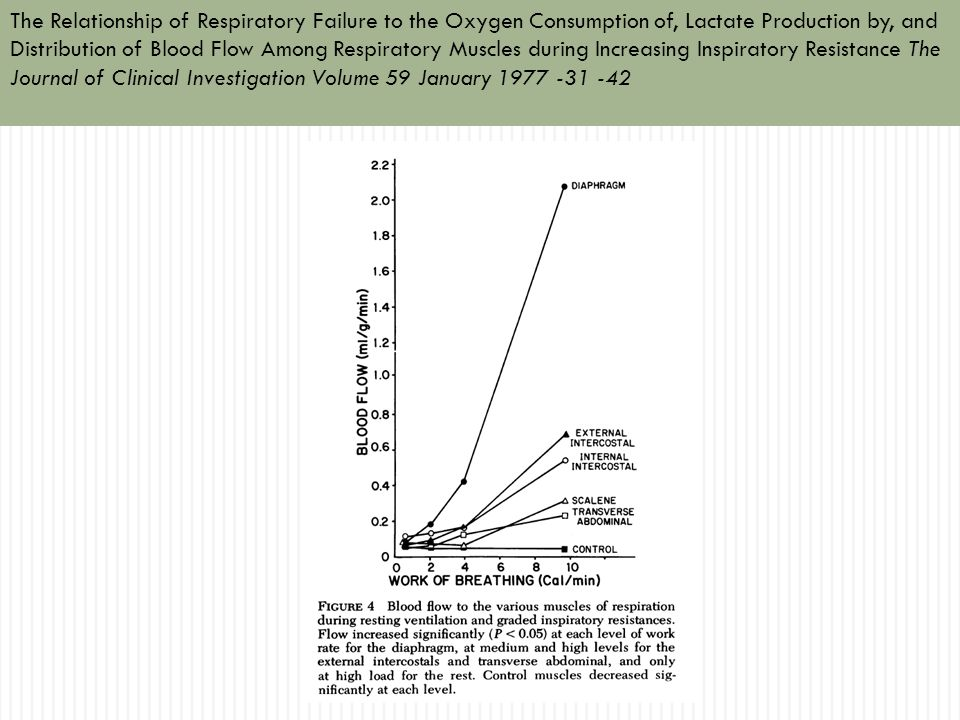 The Relationship of Respiratory Failure to the Oxygen Consumption of, Lactate Production by, and Distribution of Blood Flow Among Respiratory Muscles during Increasing Inspiratory Resistance The Journal of Clinical Investigation Volume 59 January