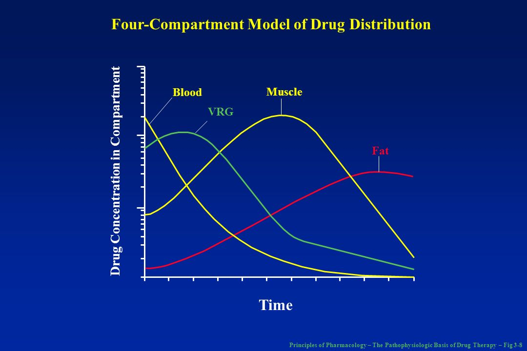 Four-Compartment Model of Drug Distribution