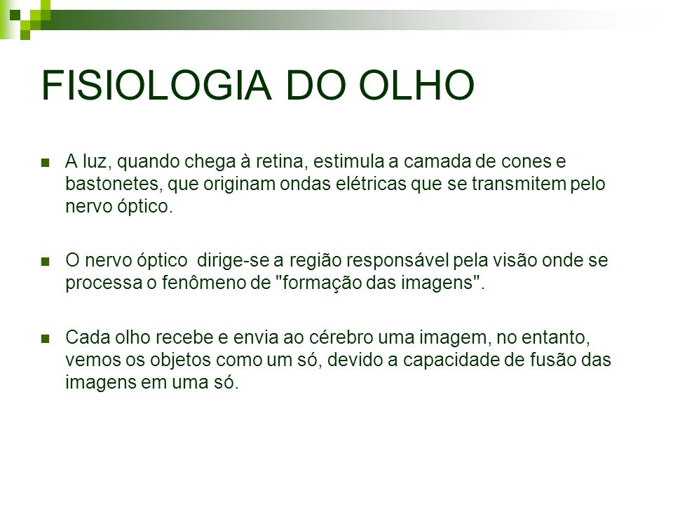 FISIOLOGIA DO OLHO