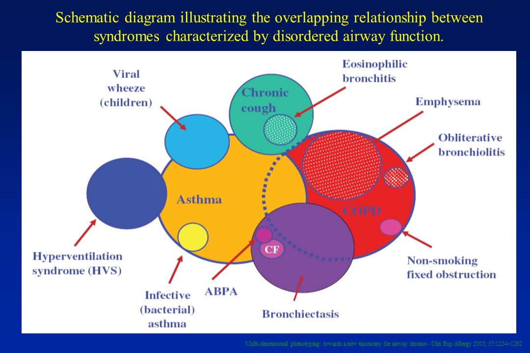 Schematic diagram illustrating the overlapping relationship between syndromes characterized by disordered airway function.