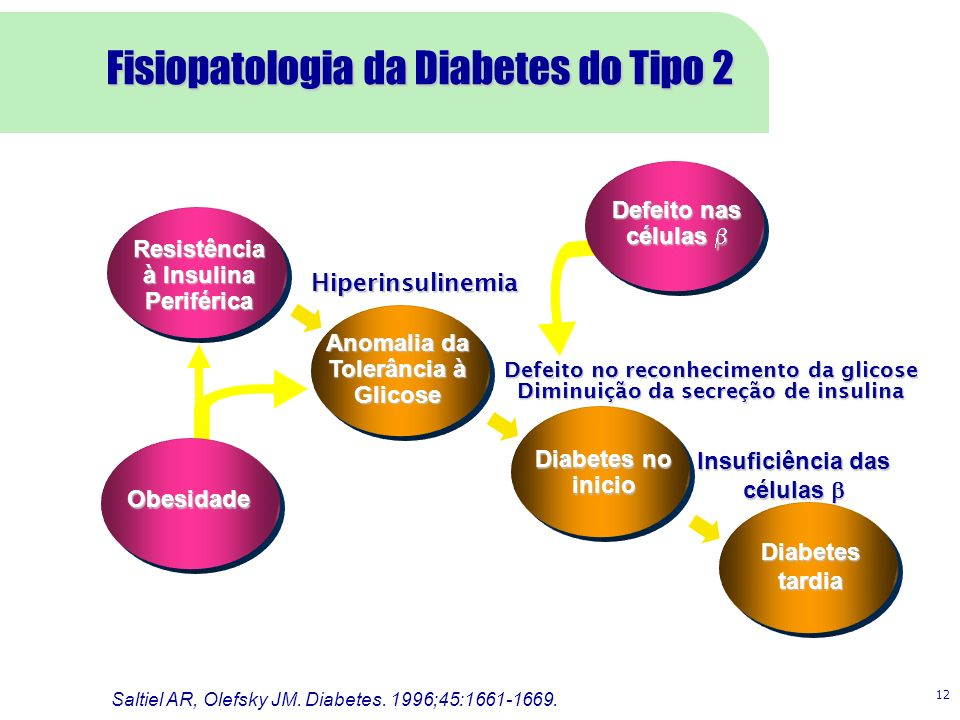 Fisiopatologia da Diabetes do Tipo 2