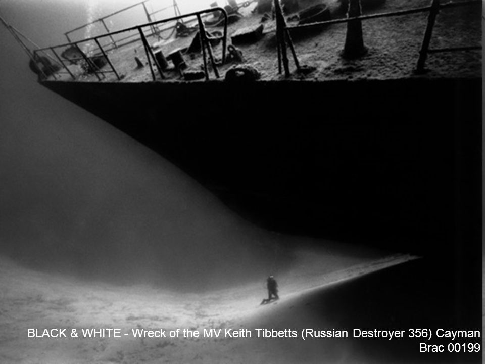 BLACK & WHITE - Wreck of the MV Keith Tibbetts (Russian Destroyer 356) Cayman Brac 00199