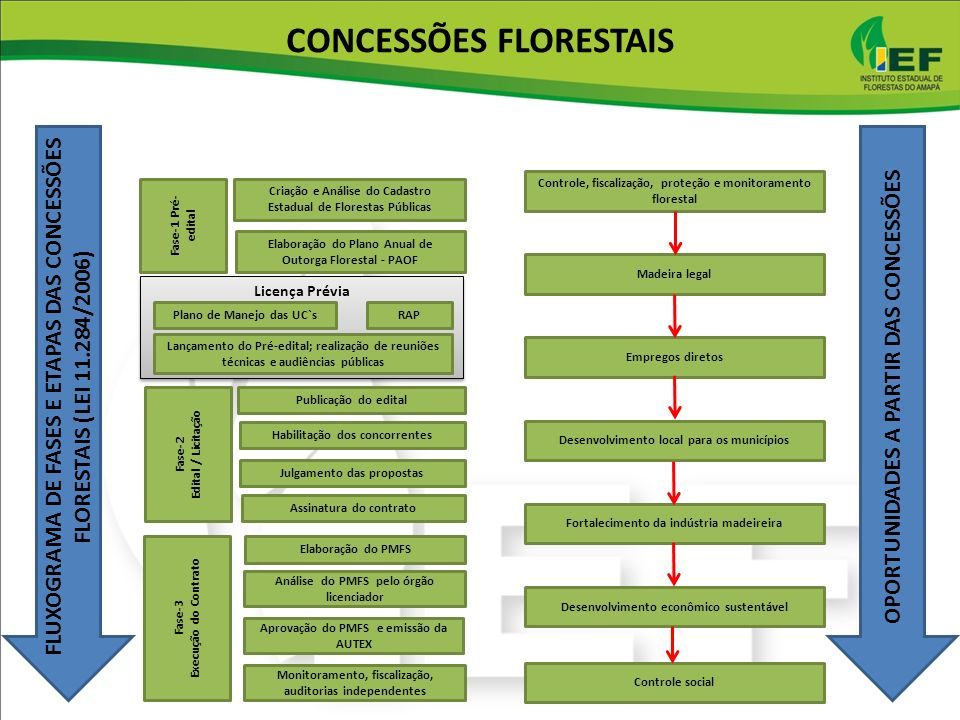 CONCESS%C3%95ES+FLORESTAIS.jpg
